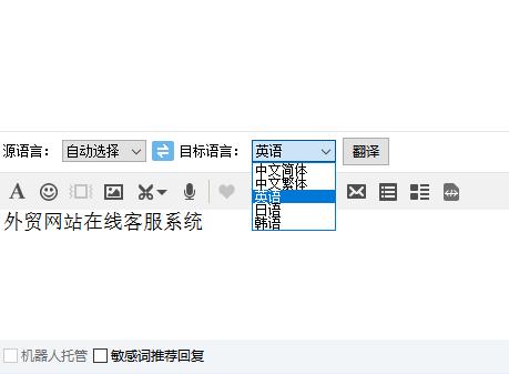 在线翻译功能