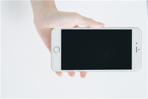 支持手机端登录
